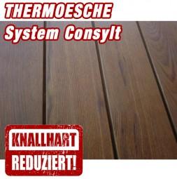Holzterrasse Thermoesche System CONSYLT