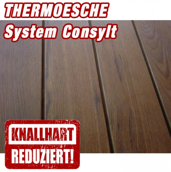 holzterrasse thermoesche system consylt holzterrasse. Black Bedroom Furniture Sets. Home Design Ideas