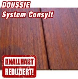 Holzterrasse Doussie System CONSYLT