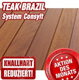 TEAK BRAZIL System CONSYLT