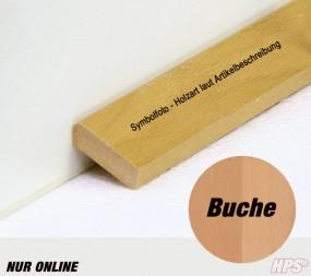 Schweizerleiste Buche roh Bund 24lfm